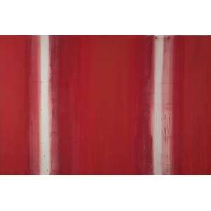 NIURA BELLAVINHA<br>Translúcido Sabarás<br>Acrílico e óleo sobre linho<br>200 x 300 cm<br>Ass.tit no verso<br>2001<br>