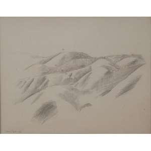 LASAR SEGALL<br>Paisagem<br>Desenho á lápis sobre papel<br>26 x 33 cm<br>Ass.dat. 1936 inf.esq<br>
