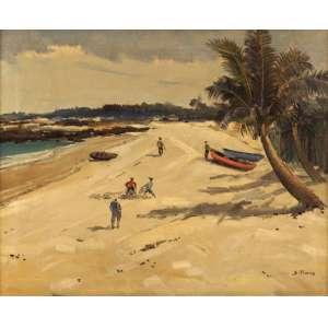 Sylvio Pinto - Praia com coqueiros ost - 1958 65 x 81