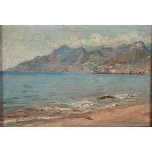 ANTÔNIO FERRIGNO<br />Marinha. Osm, 17 x 25 cm. Assinado no cid. <br />No verso etiqueta da coleção Raul Paletto.
