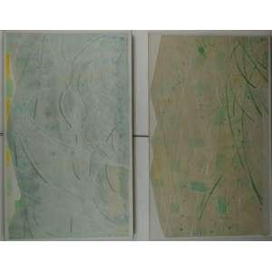 TAKASHI FUKUSHIMA - DIPTICO, Primavera e Verão - OST / CID - 100 x 60 cm cada