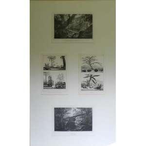 Conjunto de quatro gravuras em uma moldura, duas de37 X 24cm e duas de 28 X 38cm.