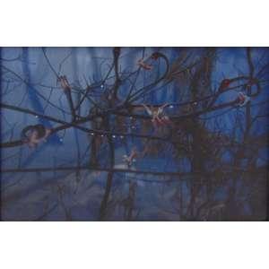 Tim Parr - Sem Título - Acrílica sobre tela, assinado no verso - 2005 - 13,5 x 20 cm.