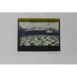 ANNA BELLA GEIGER - Terra - Gravura/CID - 50/50 - 67 x 47 cm.(vidro quebrado)