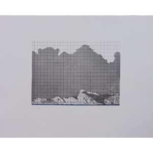 MALU FATORELLI - S/T - Gravura em metal / CID - dat 1999 - N° 75/100 - 37 x 47 cm. Obra não emoldurada