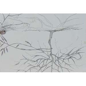 MONICA RUBINHO - Regular Dream - Desenho com ponta porosa sobre papel - Assinado no verso - dat 2008 - 21 x 30 cm.