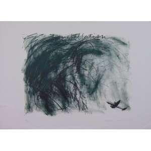 CARMELA GROSS - Constellation - Litografia - Assinada e dat 1984 - N° 68/100 - 50 x 70 cm. Obra não emoldurada
