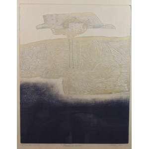 ISABEL PONS - Pássaro e Nuvem - Gravura / CID - PA - Tiré par L artiste - 50 x 40 cm.