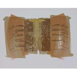 Carlos Vergara - S/T - Serigrafia - 69/100 - Ass. CID - 1997 - 37 x 47 cm. não emoldurada