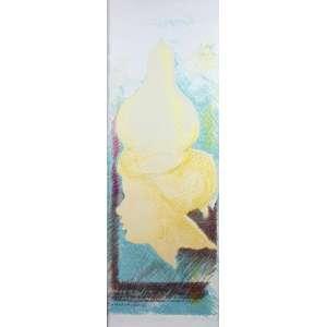 Flavio Império - Acaucana - litografia - 23/40 - Ass. dat - 1989 - 100 x 35 cm.
