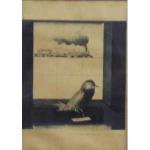 EVANDRO CARLOS JARDIM - S/T - gravura em metal - P.A. - ass. cid - 27x19 cm - moldura no estado.