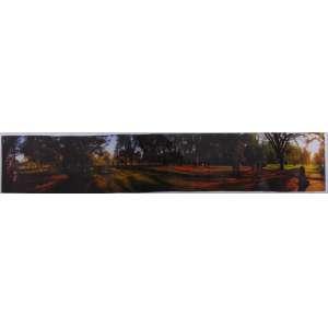 Fotografia Ibirapuera - 24 x 120 cm.