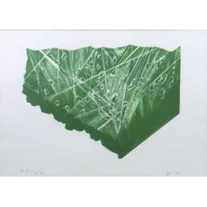 Maria Bonomi - Litografia - 33/133 - ass. cid - 1988 - 33x47 cm
