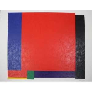 Sued - S/T - serigrafia - 16/120 - ass. cid - 2009 - 75x95 cm - não emoldurada.