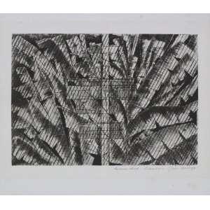 Evandro Carlos Jardim - S/T - gravura em metal - ass. cid - não emoldurada - 21x24 cm.