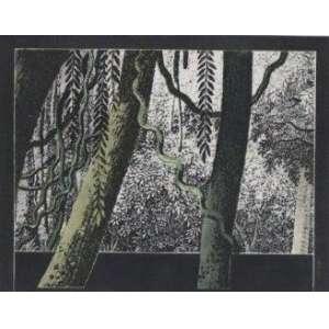 Carlos Martins - Série Guarani - gravura em metal - P.A. - ass. cid - 1985 - 50x64 cm - não emoldurada.