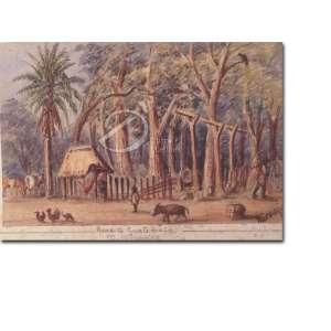 N. Araujo.<br>Paisagem Rural - Guatemala. Aquarela, 10,5 x 17 cm. Sem moldura. Assinado embaixo à direita: N. Araujo. <br>
