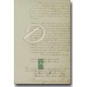 Certidão de Batismo, manuscrita, selada e datada de 18 de agosto de 1874; 20 x 20 cm emoldurada. Brasil, séc. XIX.