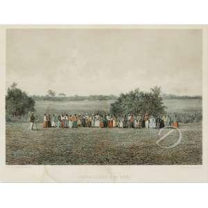 Victor Frond - Travailleurs a la Roca. Litografia aquarelada, 24,50 x 35 cm. Gravado por F Sorrieu Impresso por Lemercier - Paris. A partir da fotografia de Victor Frond. França, sec. XIX.