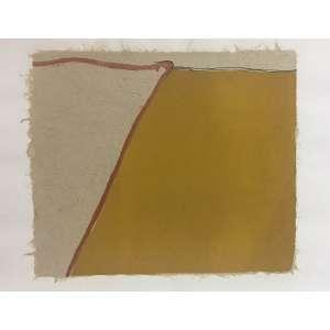 Manfredo de Souza Netto - Sem Título - 50 x 66 cm - Litografia 6/20 - Ass. CID e Dat. 2000 – Sem Moldura