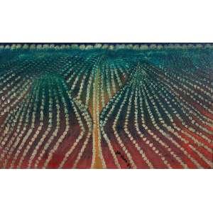 José Antonio da Silva - Plantação - Óleo s/ tela - 59,5 x 98 cm - ass. centro inferior e verso - dat. 1987