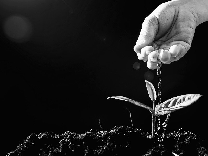 Como alcançar o favor de Deus para meus negócios?