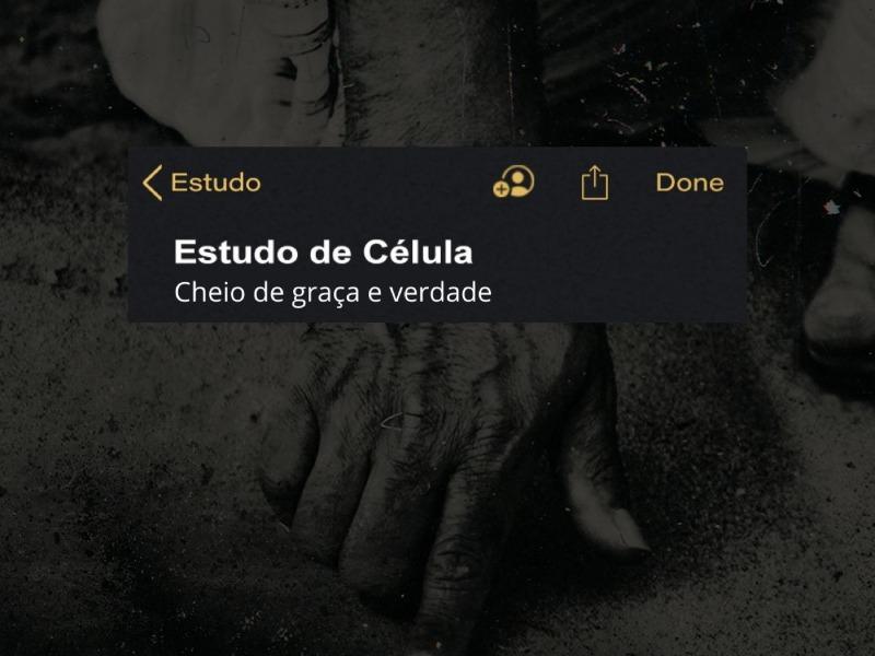 CHEIO DE GRAÇA E VERDADE