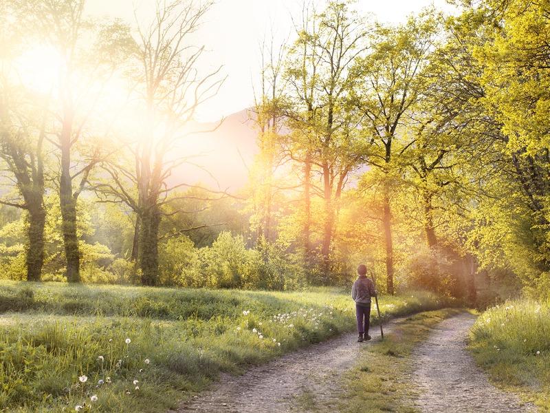A arte de reconhecer o Senhor em nossos caminhos