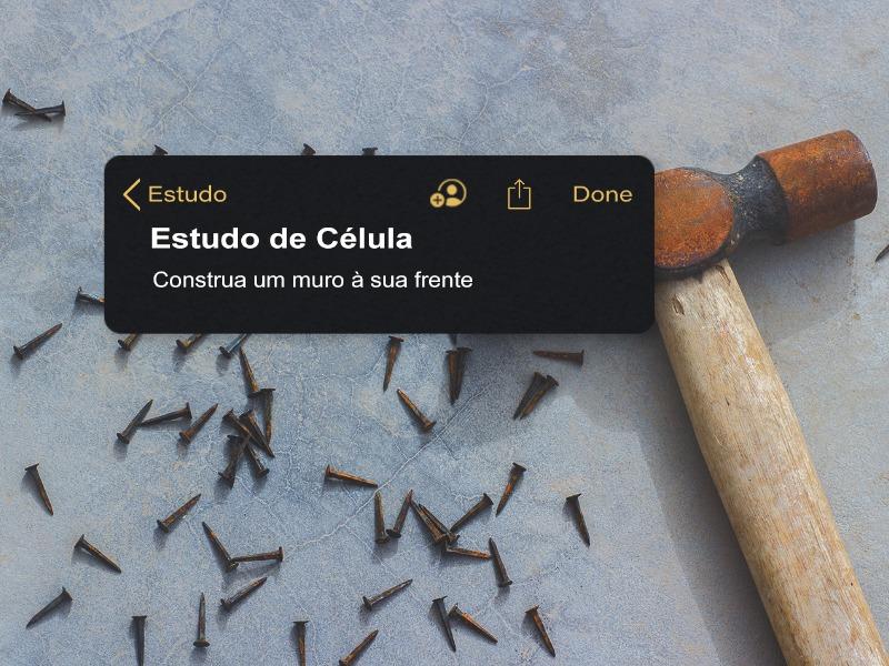 CONSTRUA UM MURO À SUA FRENTE