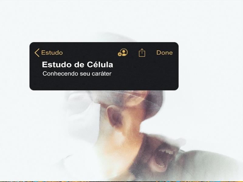 CONHECENDO SEU CARÁTER