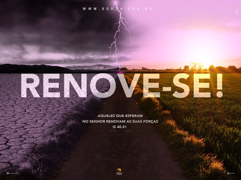 RENOVE-SE