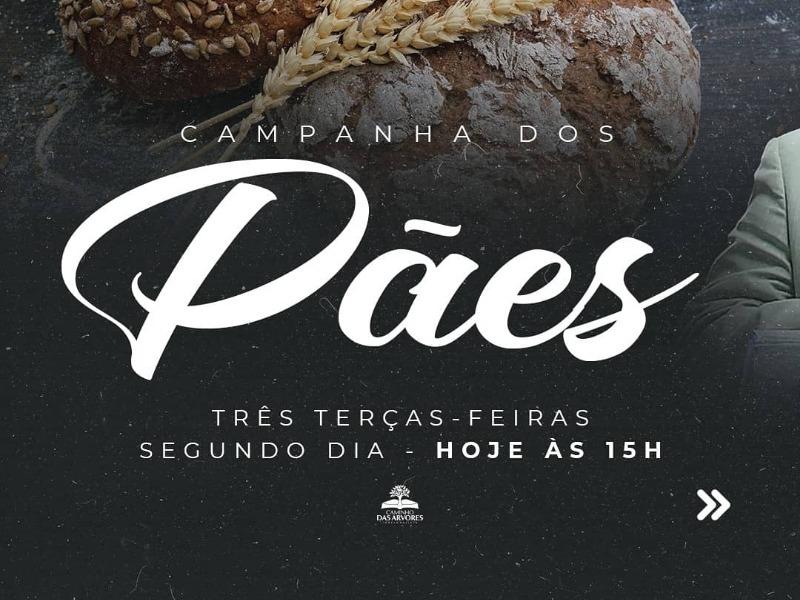 CAMPANHA DOS PÃES - 2°ELO