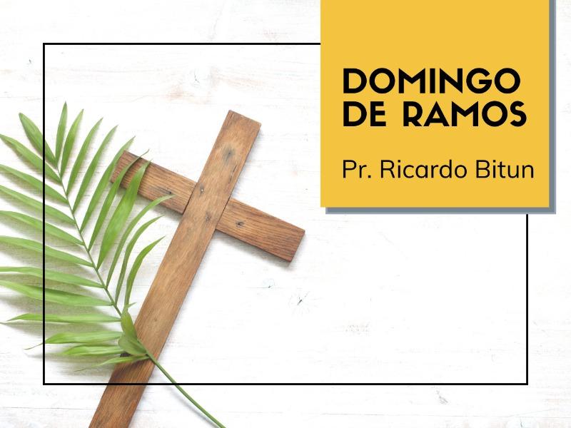 05/04/2020 - Domingo de Ramos