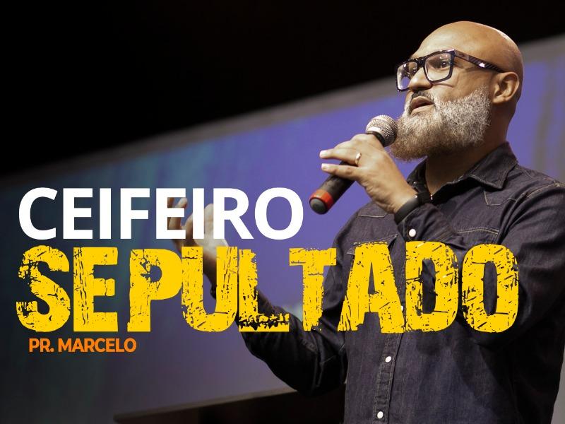CEIFEIRO SEPULTADO