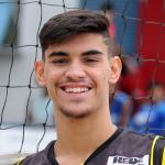 Luis Felipe Loureiro Torres