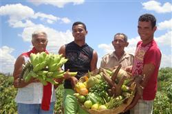 Conferência debate agricultura familiar no Litoral Norte e Agreste Baiano