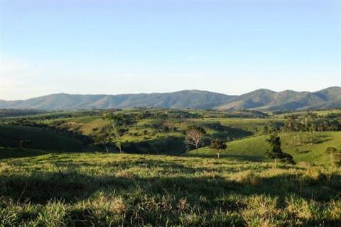 Mobilização local pede criação de Unidades de Conservação no Recôncavo Sul Baiano