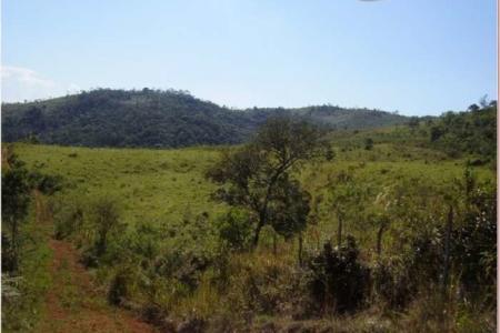 Fazenda localizada aproximadamente 153 km de Belo Horizonte, próximo a Conselheiro Lafaiete, no Distrito de Pinheiros Altos, Município de Piranga - MG, com 414 hectares sendo 68 hectares em pastagem.  Venha fazer um bom negócio!!!    Atualizado em 27/11/2018.