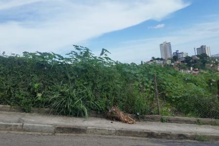 Terreno com  2.195 m²  próximo ao Shopping Del Rey. Fácil acesso para a Avenida Presidente Carlos Luz.  Zona de uso: NO 210 / ZE.