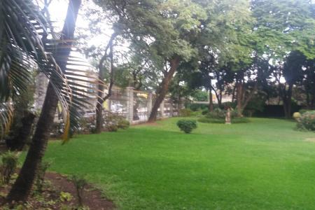 Lote comercial, murado, portão de ferro, grade,  jardim, gramado.  3 lotes planos de 750 m² cada, totalizando 2.250 m².  Zoneamento: ZP 2.