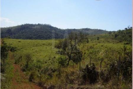 Fazenda localizada aproximadamente 153 km de Belo Horizonte, próximo a Conselheiro Lafaiete, no Distrito de Pinheiros Altos, Município de Piranga - MG, com 414 hectares sendo 68 hectares em pastagem.