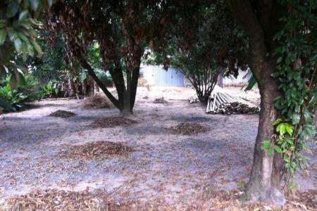 *** EXCELENTE LOCALIZAÇÃO *** LOTE: Área de 1.400m², plano, todo murado, possui uma casa de apoio com 03 cômodos. Diversidade de árvores frutíferas, localizado aproximadamente 50 metros da lagoa da Pampulha.  SAIBA MAIS SOBRE ESTE IMÓVEL LAR IMÓVEIS LTDA. - Telefone: (31) 3232-2001 Av. Alameda das Palmeiras 717, Pampulha - BH - MG  SITE: www.larimoveis.com.br  EMAIL: lar@larimoveis.com.br