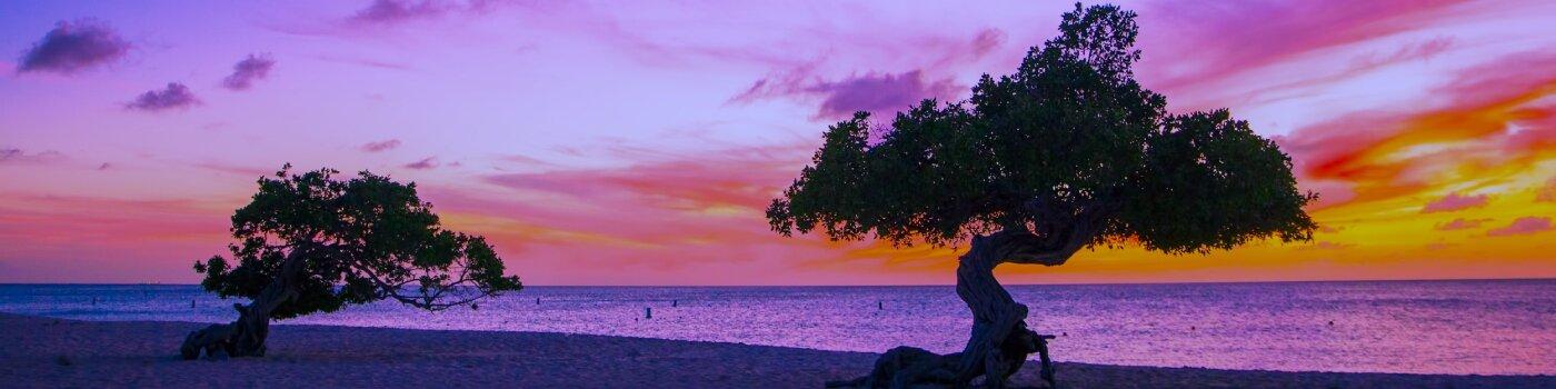 Dos árboles en una playa
