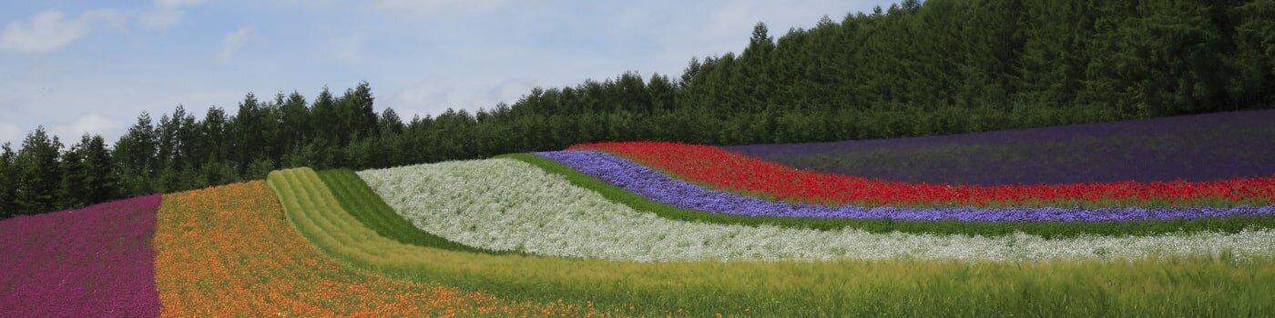 Gardens in Japan