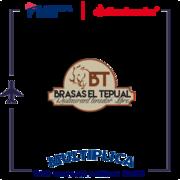 tepual logo2