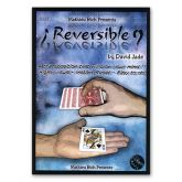 Reversible by David Jade & Mathieu Btch   #885