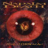 Napalm Death - Inside the Torn Apart (Importado)