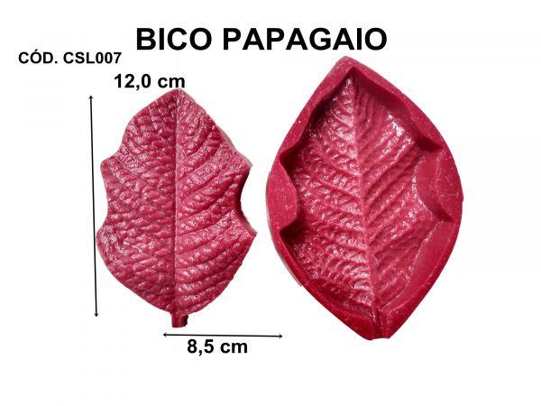 BICO DE PAPAGAIO / FLOR DE NATAL