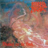 Morbid Angel - Blessed Are The Sich