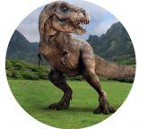 Papel Arroz Dinossauro Redondo 006 1un
